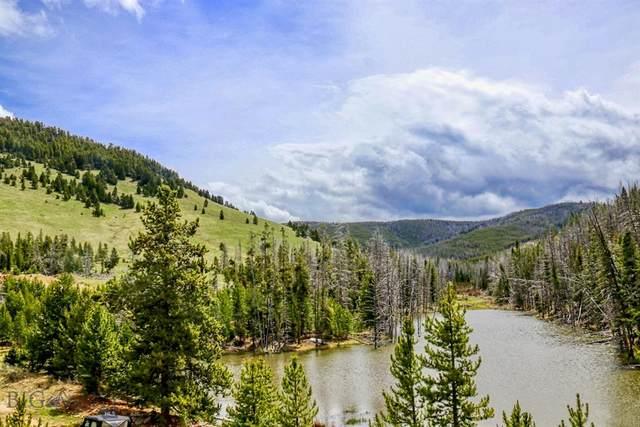 NHN South Fork Dry Cottonwood Creek, Warm Springs, MT 59756 (MLS #346172) :: L&K Real Estate