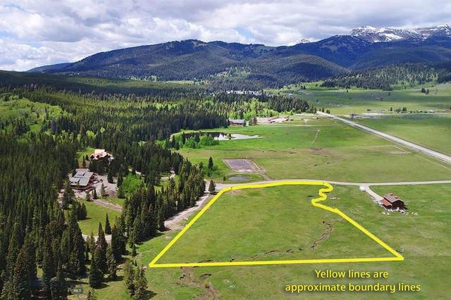 NNN Buttermilk Court, West Yellowstone, MT 59758 (MLS #346247) :: Montana Home Team
