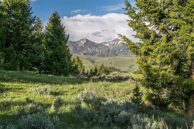 Lot 1A Sun West Ranch, Cameron, MT 59720 (MLS #346258) :: Hart Real Estate Solutions