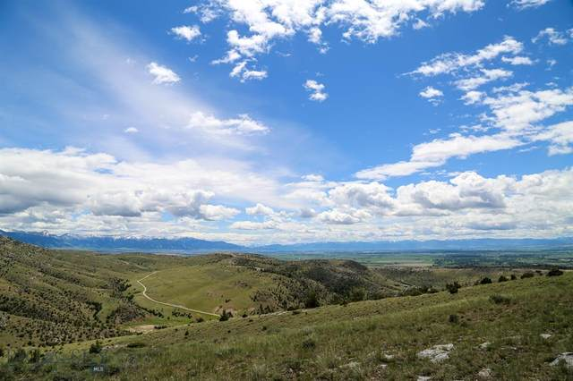 LOT 192 Tbd Hilltop, Manhattan, MT 59741 (MLS #346308) :: Black Diamond Montana