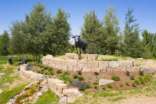 Lot 92 T-Bone Way, Bozeman, MT 59718 (MLS #346799) :: Hart Real Estate Solutions