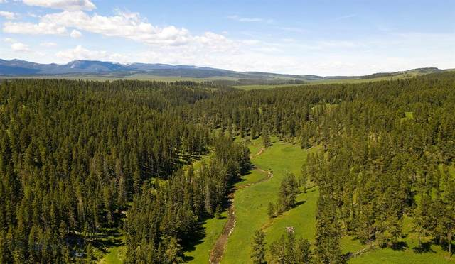 TBD Mccartney Springs Mountain Ranch, Lewistown, MT 59457 (MLS #346841) :: Hart Real Estate Solutions