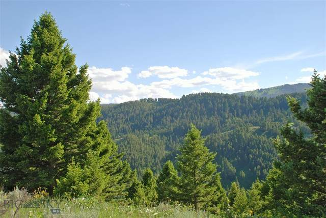 Lot 1 Timbercrest Estates, Lot 1, Tract 3529, Bozeman, MT 59715 (MLS #346914) :: Montana Home Team
