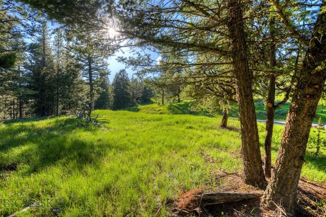 Tbd Crown Butte, Big Sky, MT 59716 (MLS #347008) :: Montana Life Real Estate