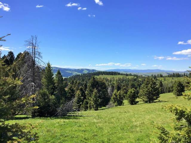 TBD Georgetown Lake Road, Philipsburg, MT 59858 (MLS #347042) :: Black Diamond Montana