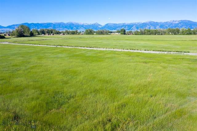 TBD Jackal Road, Bozeman, MT 59718 (MLS #348207) :: Hart Real Estate Solutions