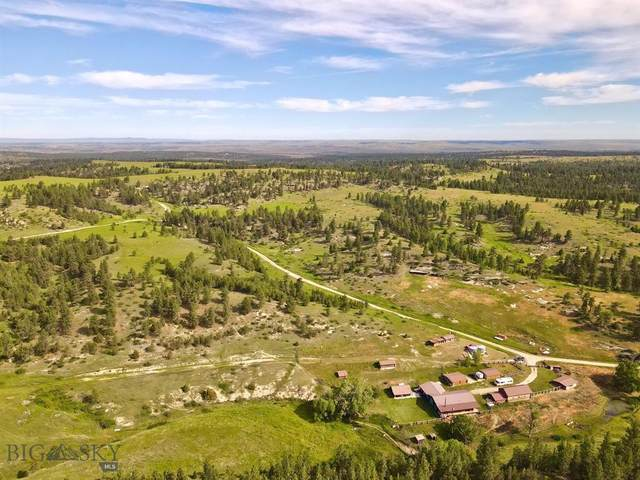 Shedhorn Ranch, Roundup, MT 59072 (MLS #348226) :: Black Diamond Montana