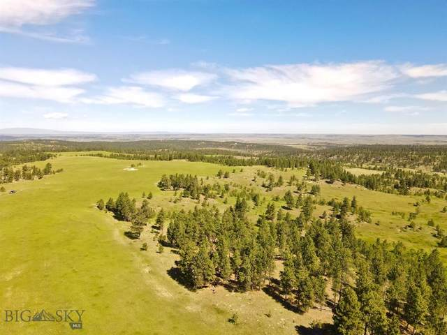 TBD Bender Road, Roundup, MT 59072 (MLS #348227) :: Black Diamond Montana
