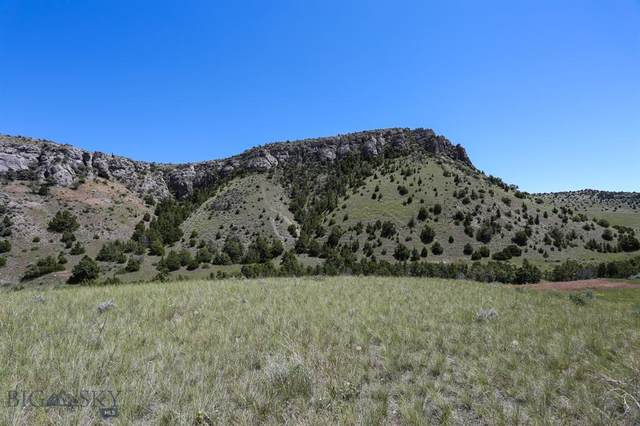Lot 120 Tbd Nixon Gulch Road, Manhattan, MT 59741 (MLS #348263) :: Black Diamond Montana