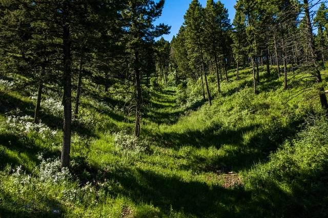 TBD Elk Ridge Road, Livingston, MT 59047 (MLS #348411) :: Black Diamond Montana