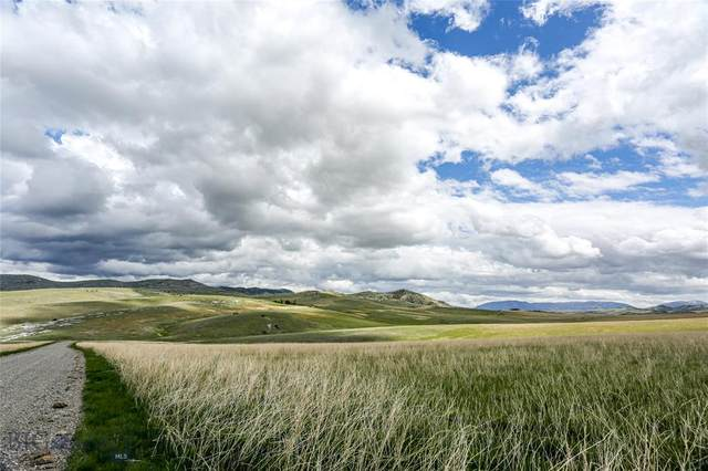 LOT 164 Tbd Blue Bonnet Road, Manhattan, MT 59741 (MLS #348456) :: Black Diamond Montana