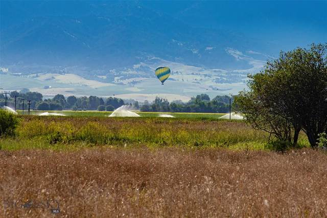Lot 10 East Riparian Way, Bozeman, MT 59718 (MLS #348625) :: Hart Real Estate Solutions