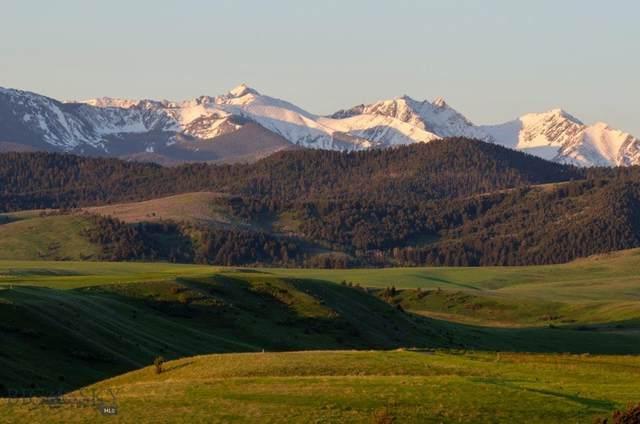 TBD Rattlesnake Road, Gallatin Gateway, MT 59730 (MLS #348855) :: Black Diamond Montana