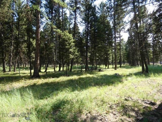3214 Hwy 83, Seeley Lake, MT 59868 (MLS #348995) :: Montana Home Team