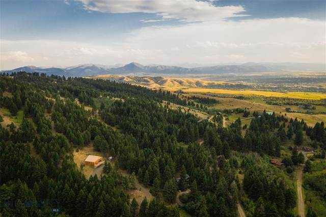 8938 Gold Dust Trail, Bozeman, MT 59715 (MLS #349242) :: Hart Real Estate Solutions
