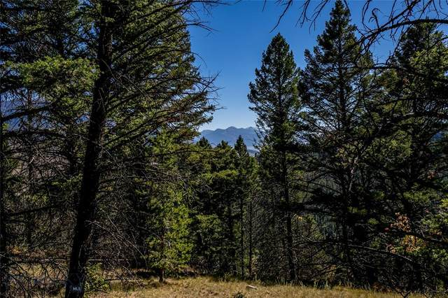 Lot 10A Sun West Ranch, Cameron, MT 59720 (MLS #349305) :: Montana Mountain Home, LLC