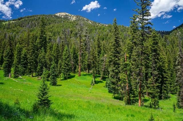 Tract 3A Upper Chief Joseph Trail, Big Sky, MT 59716 (MLS #349356) :: L&K Real Estate