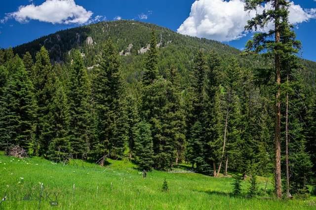 Tract 2B North Fork Road, Big Sky, MT 59716 (MLS #349380) :: L&K Real Estate