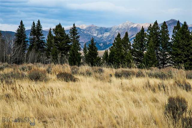 Lot 34 Sun West Ranch, Cameron, MT 59720 (MLS #349427) :: L&K Real Estate