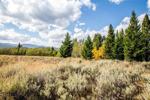 Lot 35 Sun West Ranch, Cameron, MT 59720 (MLS #349535) :: L&K Real Estate