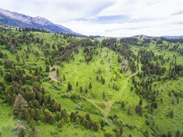 9440 Bridger Canyon Road, Bozeman, MT 59715 (MLS #349607) :: Black Diamond Montana