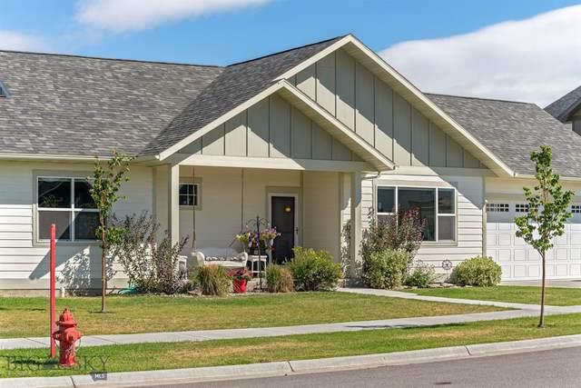 182 Snowy Owl Trail, Bozeman, MT 59718 (MLS #349790) :: Hart Real Estate Solutions