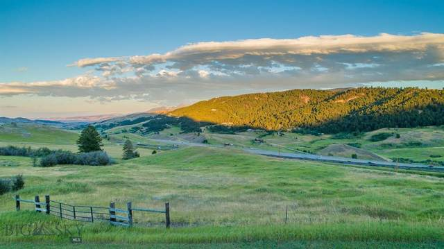 TBDd Lupine Lane, Livingston, MT 59047 (MLS #349923) :: L&K Real Estate