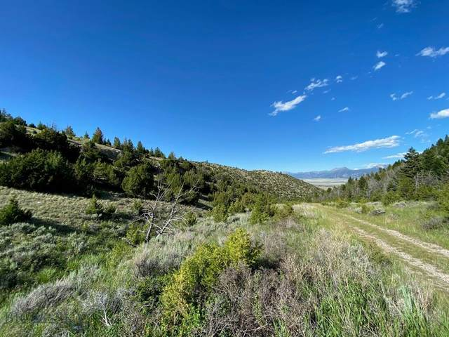Lot 222 & 223 Shining Mountains, Ennis, MT 59729 (MLS #349930) :: L&K Real Estate
