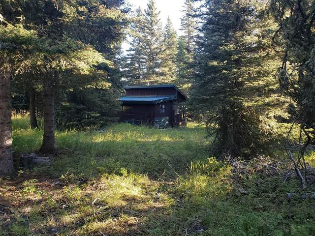 Lot 21 Smith Creek Cabins (2Nd Street), Wilsall, MT 59645 (MLS #349974) :: L&K Real Estate
