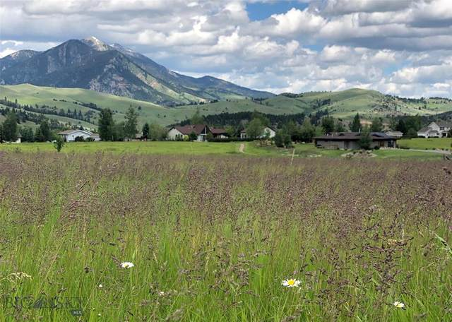 Lot 6 Canary Lane, Bozeman, MT 59715 (MLS #349990) :: Montana Life Real Estate