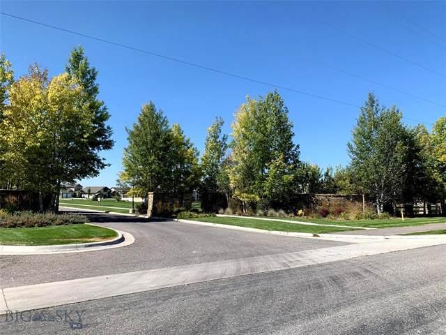 TBD E Shade Tree, Manhattan, MT 59741 (MLS #350046) :: Black Diamond Montana