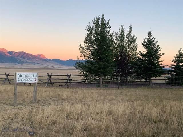Lot 82 Pronghorn Meadows, Ennis, MT 59729 (MLS #350094) :: Montana Home Team
