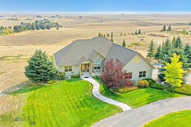 479 Fox Ridge Drive, Dillon, MT 59725 (MLS #350155) :: Montana Home Team