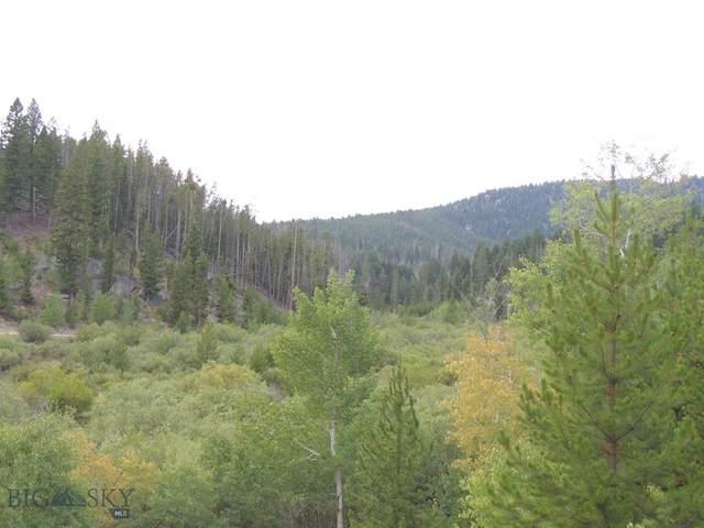 TBD Delmoe Lake Road, Whitehall, MT 59759 (MLS #350266) :: Montana Life Real Estate