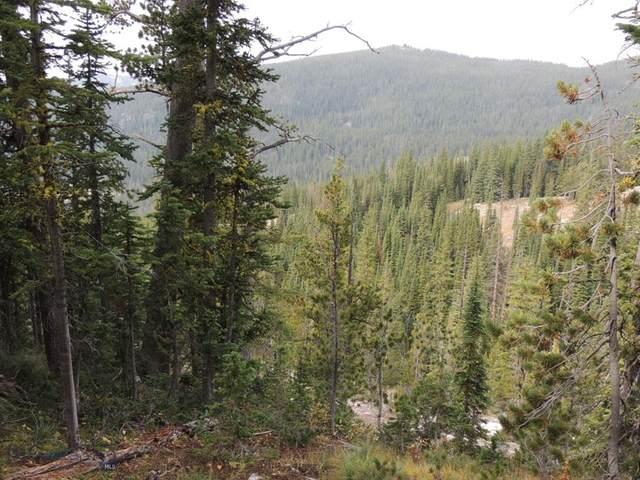 TBD Red Lion / Hidden Mine Rd., Philipsburg, MT 59858 (MLS #350270) :: Montana Life Real Estate