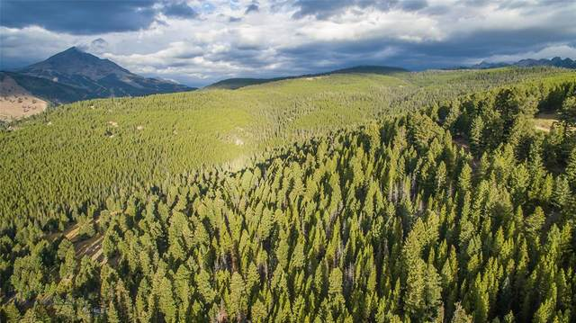 TBD Ridge Fork Road, Big Sky, MT 59716 (MLS #350325) :: Black Diamond Montana