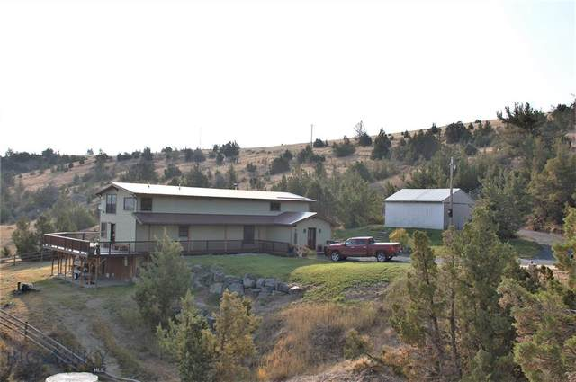 131 Parrot Ditch Road, Whitehall, MT 59759 (MLS #350350) :: Hart Real Estate Solutions