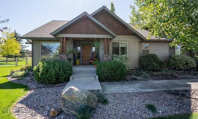 163 Laden Lane, Bozeman, MT 59718 (MLS #350372) :: Black Diamond Montana