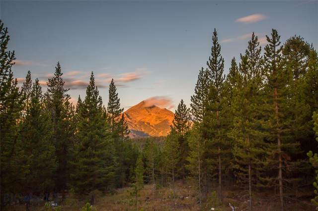 TBD Ridge Fork Road, Big Sky, MT 59716 (MLS #350383) :: Montana Life Real Estate