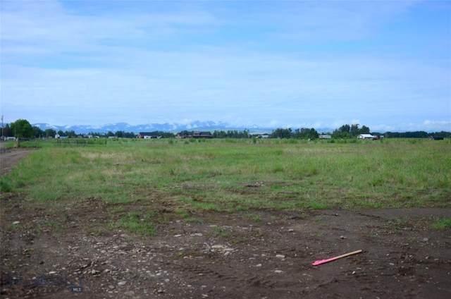 TBD Pony Drive, Belgrade, MT 59714 (MLS #350638) :: Montana Life Real Estate
