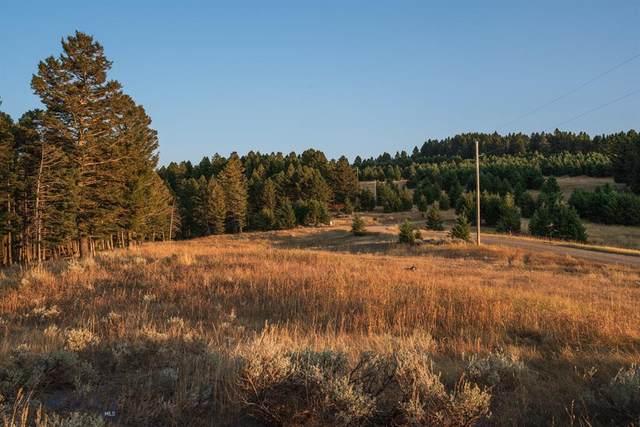 Lot 7 Smokey Hollow Road, Bozeman, MT 59715 (MLS #350754) :: Montana Home Team