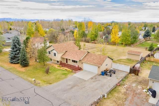 359 Mountain Lion Trl, Bozeman, MT 59718 (MLS #350781) :: Montana Life Real Estate