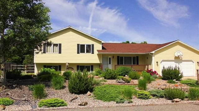 117 Bison Trl, Bozeman, MT 59718 (MLS #350830) :: Montana Life Real Estate