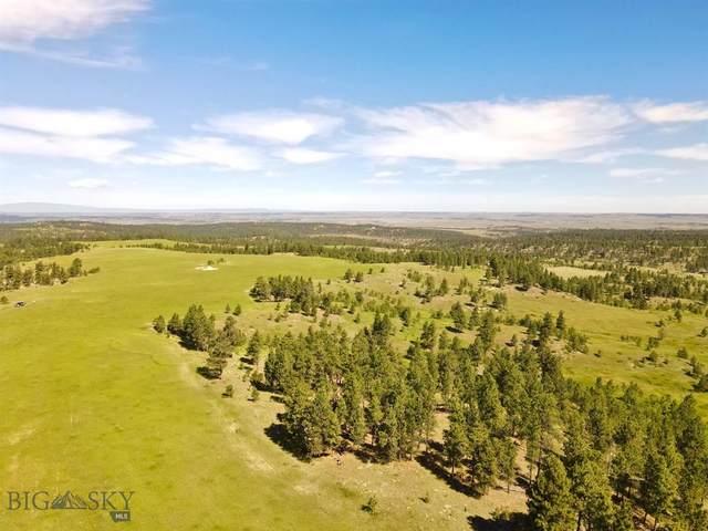 Parcel 1 Bender Road, Roundup, MT 59072 (MLS #350863) :: Black Diamond Montana
