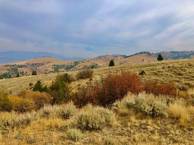 TBD Ross Gulch Road, Broadwater, MT 59644 (MLS #350867) :: Black Diamond Montana