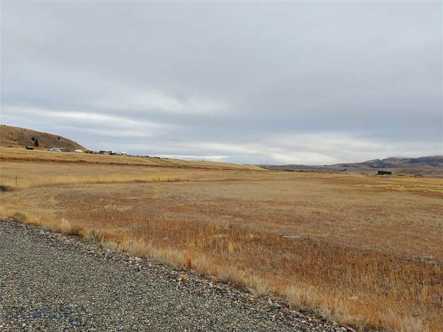 13 Dandelion, Pray, MT 59065 (MLS #350877) :: L&K Real Estate