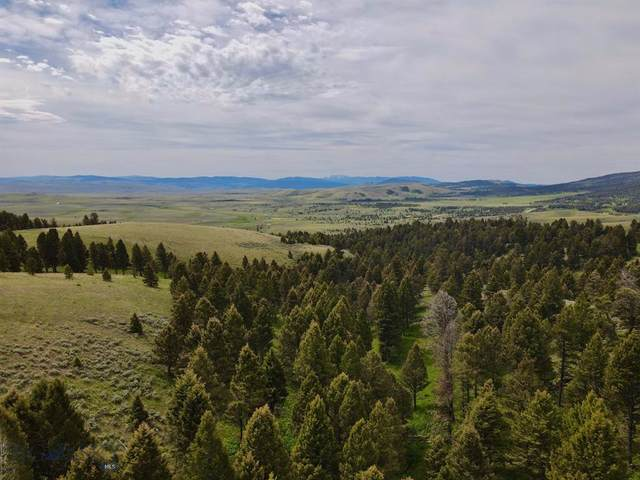 TBD Little Gully Run, White Sulphur Springs, MT 59645 (MLS #350887) :: Montana Home Team