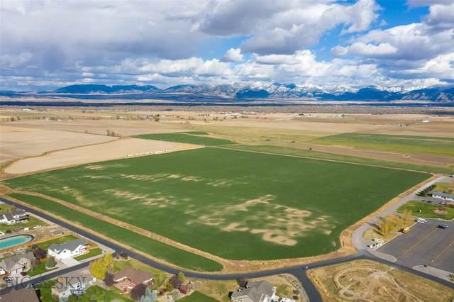 tbd Heino Place, Churchill, MT 59714 (MLS #351007) :: Montana Life Real Estate