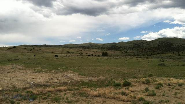 NHN Williams Creek Road Lot 4, Alder, MT 59710 (MLS #351101) :: Montana Home Team