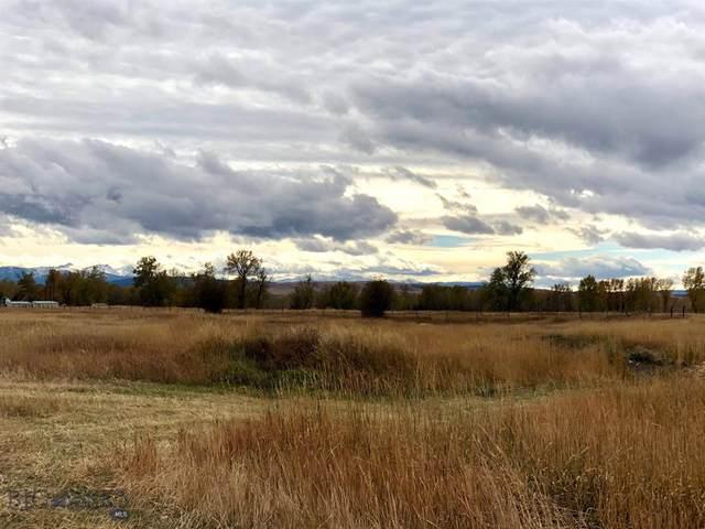 TBD Elk Rut Road, Bozeman, MT 59718 (MLS #351189) :: Black Diamond Montana